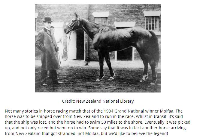 Moifaa_The 1904 Grand National Winner